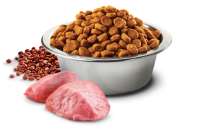 Check Out Importance Of Eating Cat Food