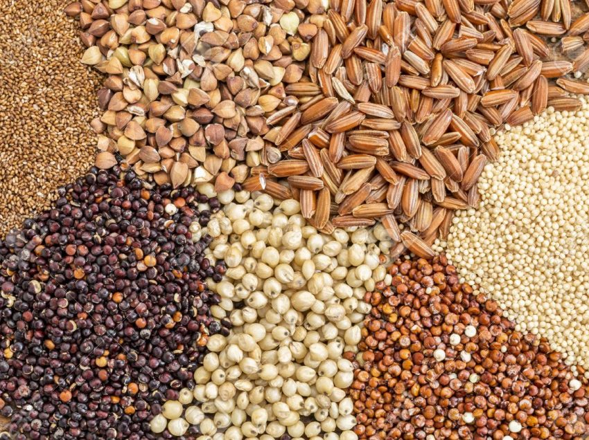 Check These Health Benefits of Millet and Sorghum – Affordable Grains