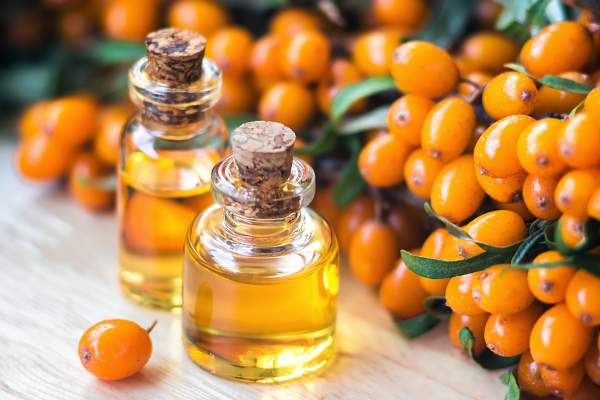 Sea Buckthorn Benefits for Hair Treatment (Hair's Super Nutrient)