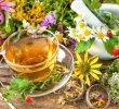 List of Herbs that Start with K and Health Benefits