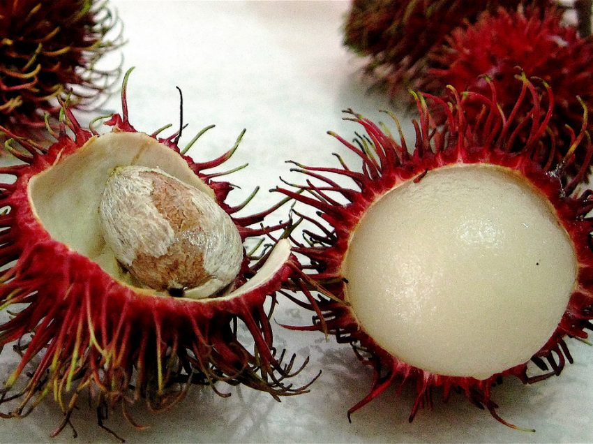 12 Hidden Benefits From Rambutan Seed For The Health
