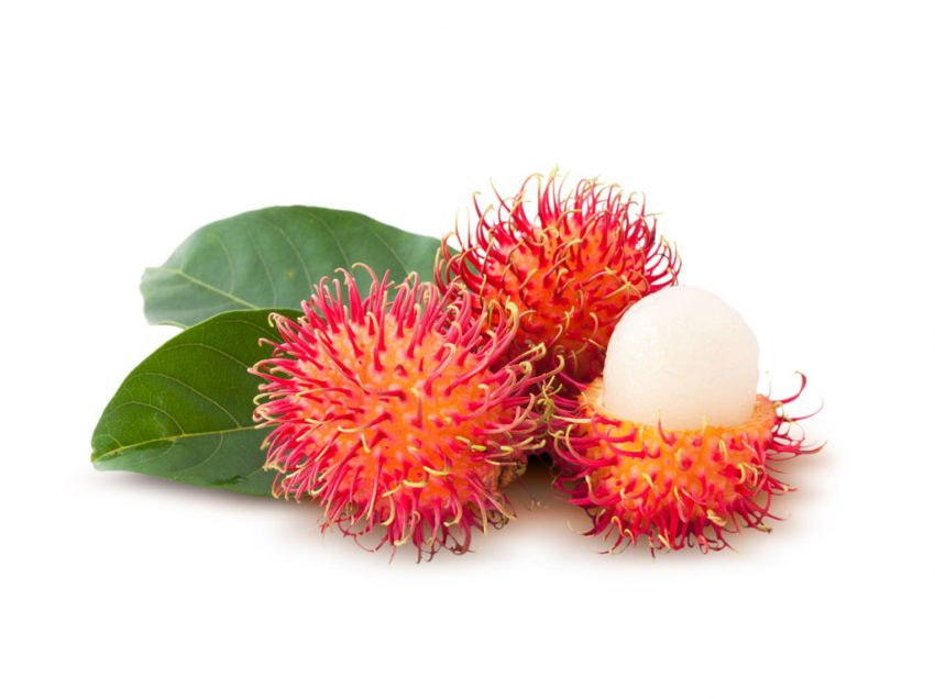 12 Possible Benefits of Rambutan for Weight Loss in Natural Way