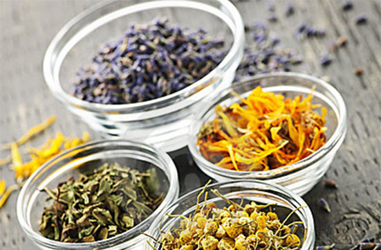 List of Herbs Beginning with Y and Health Benefits
