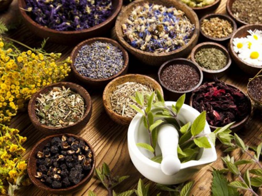 List of Herbs that Start with S and Health Benefits
