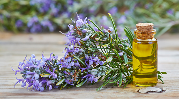 This image has an empty alt attribute; its file name is 5323fca4-rosemary-oil.jpg
