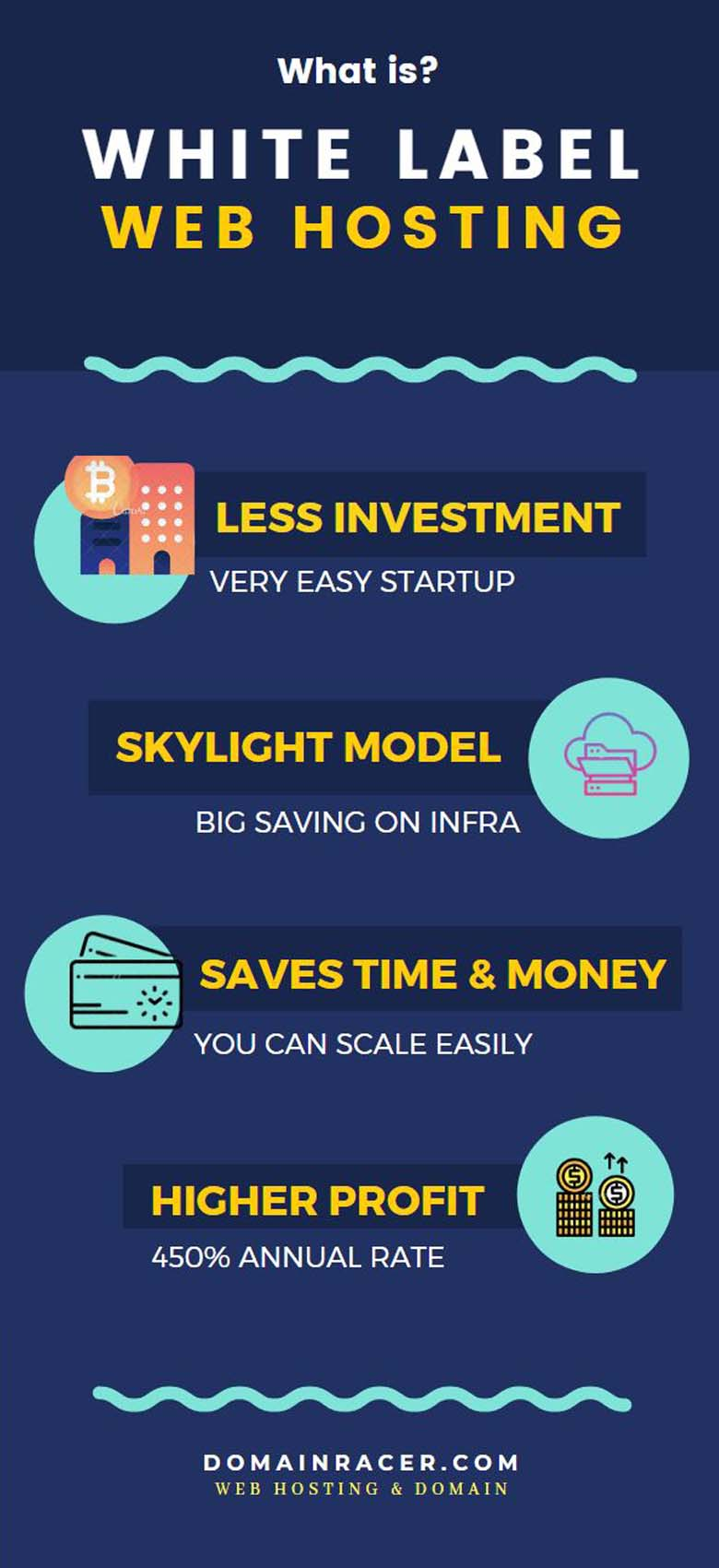 What exactly is White Label Reseller Hosting? - infographics private