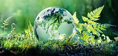 Weitere Klimaschutzmaßnahmen