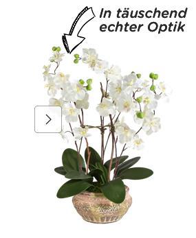 Kunstorchideen