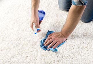 Teppich säubern