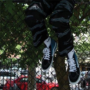 Vans Herren Schuhe