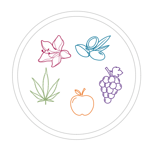 Heirloom Apple, Grape, Swiss Alpine Rose, Argan Tree icons