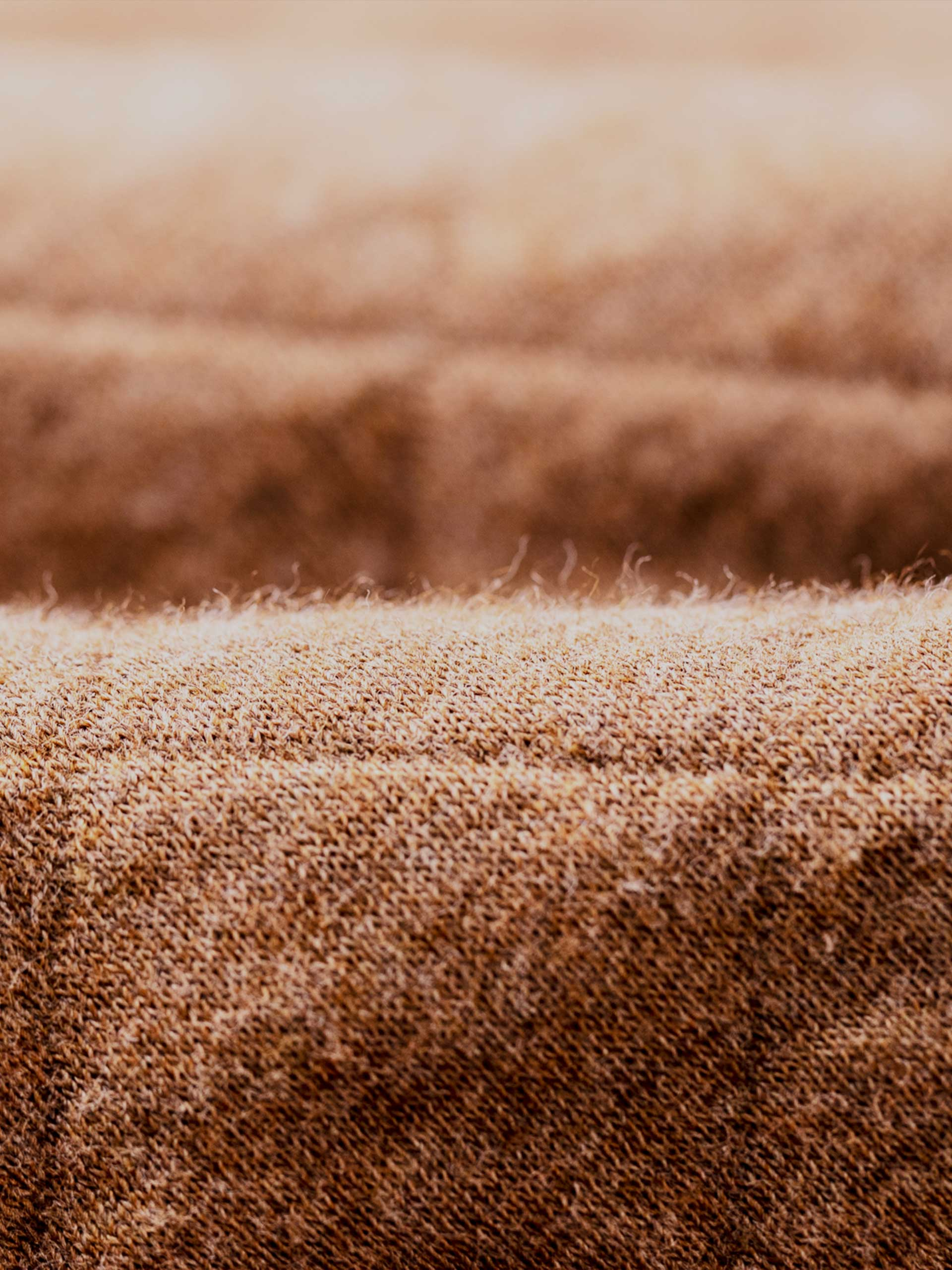 Demand Organic Cotton