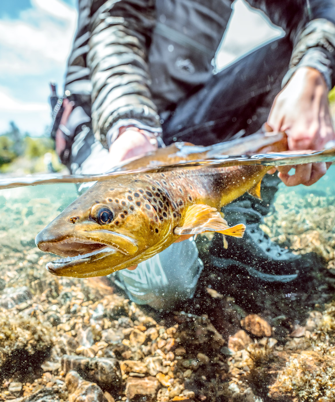 Our Favourites for Fly Fishers