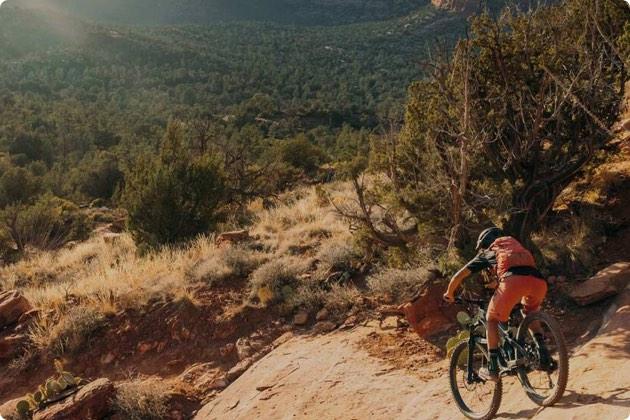 Women's Mountain Bike