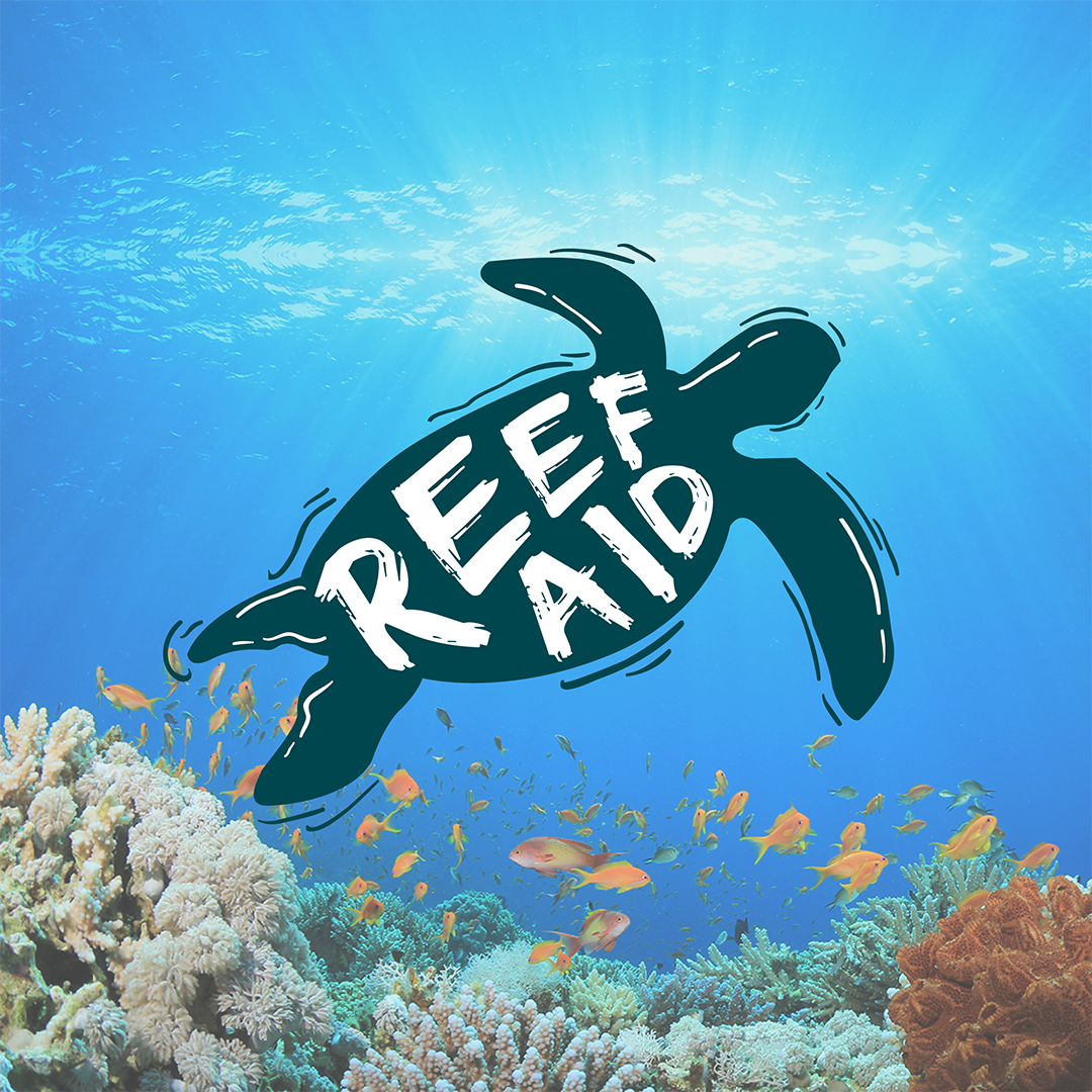 Kira from The Green Hub: Is your sunscreen hurting the Reef?