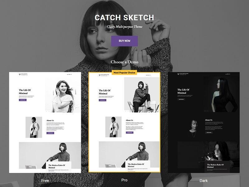 Catch Sketch
