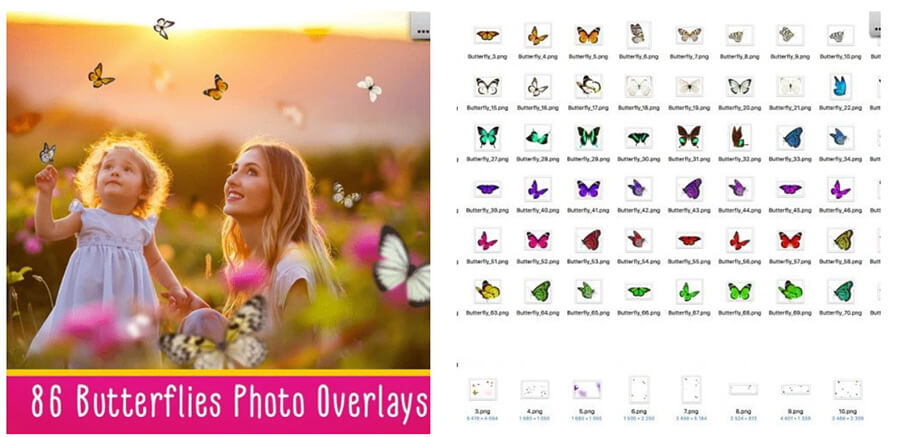 Butterflies Photo Overlays