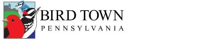 Bird town logo 638x125 1
