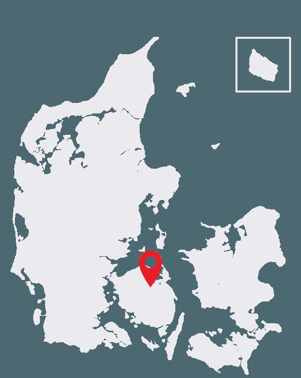 Duckfeet USA Odense Map