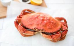 Fresh Cooked Local Dungeness Crab-Whole (1.5-2 lbs)