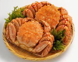 Crab - Wild Hokkaido Horsehair (Kegani) 450 - 550 gm