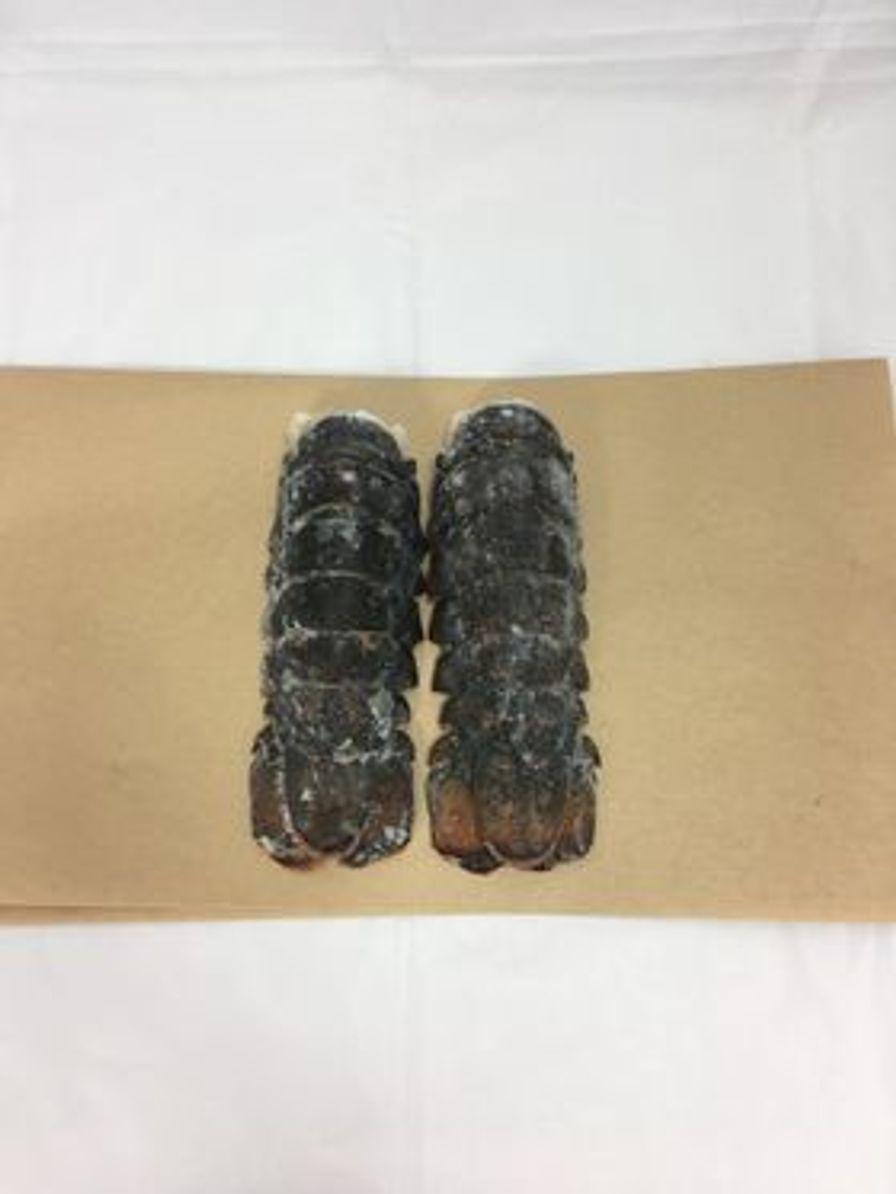 Frozen Lobster Tails 12-14oz