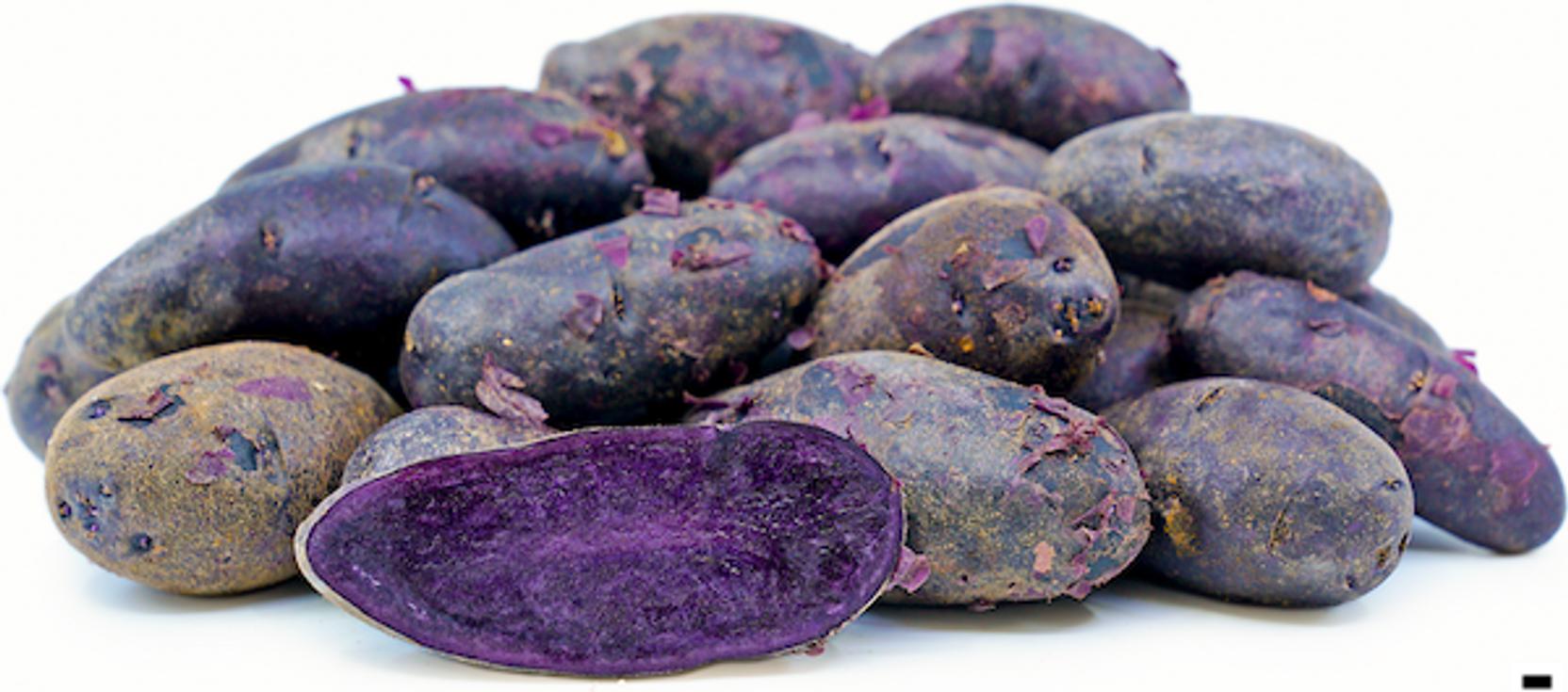Mikuni Purple Fingerling Potato Breast Pack