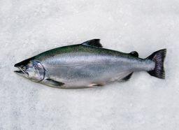 Salmon - B.C. Organic King Whole (6-8 lbs)