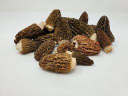 Fresh Wild Morel Mushroom