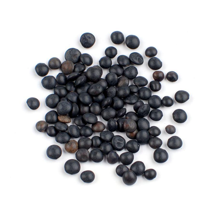 Black Beluga Lentils (Petite Black)