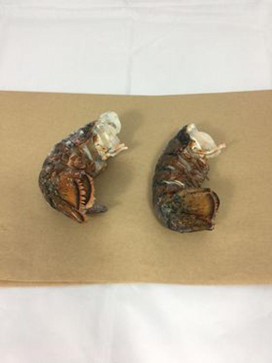 Frozen Lobster Tails 3-4oz
