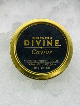 Northern Divine Sturgeon Caviar 30 Gram