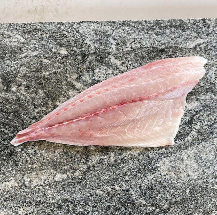 Baja Kanpachi (Fillet)