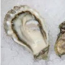 Pickering Passage Oysters