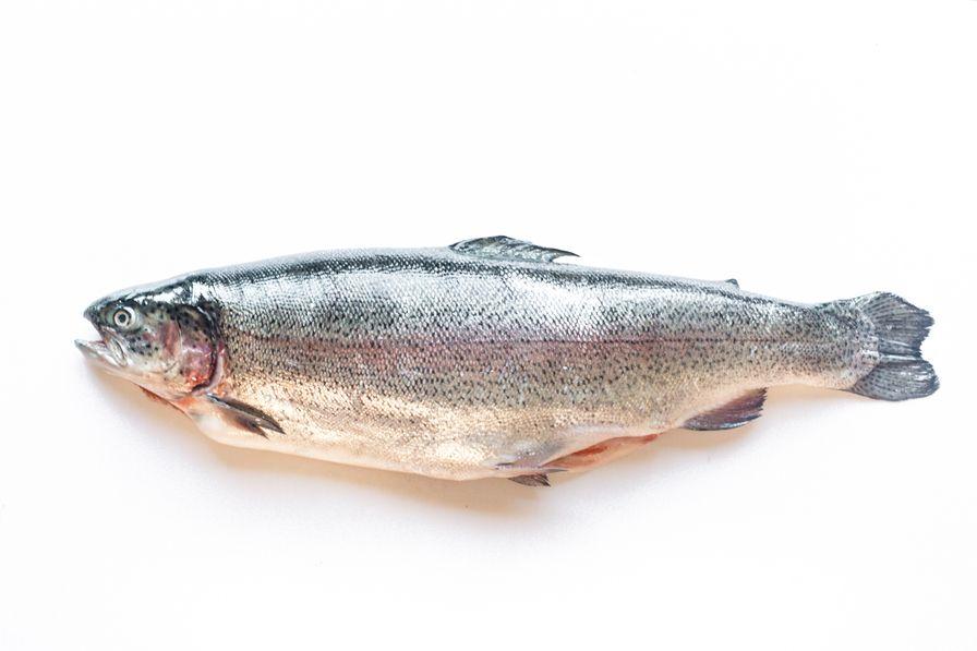 Trout - Steelhead B.C. Whole (3-5 lbs)