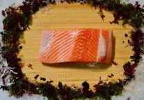 Salmon Fillet, Ora King