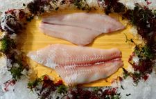 West Coast Petrale Sole Fillet