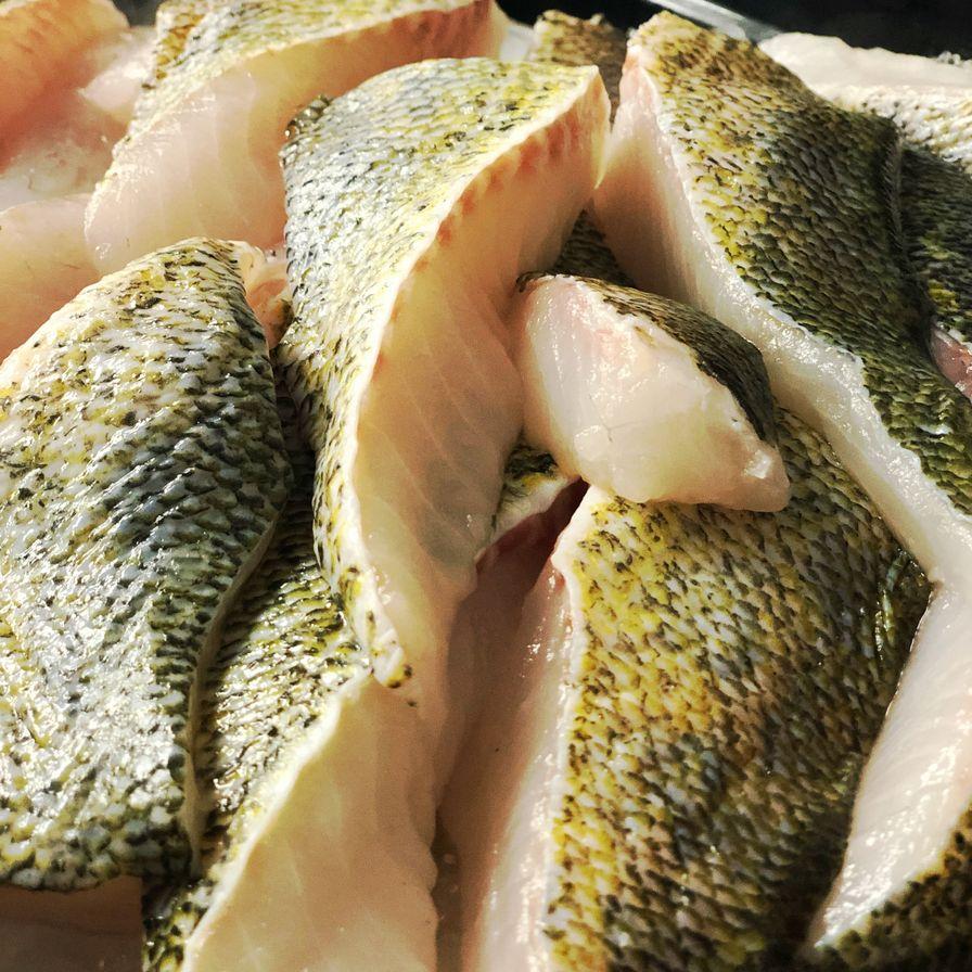 Fresh Pickerel Backs