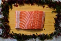 Salmon Fillet, Scottish Steelhead