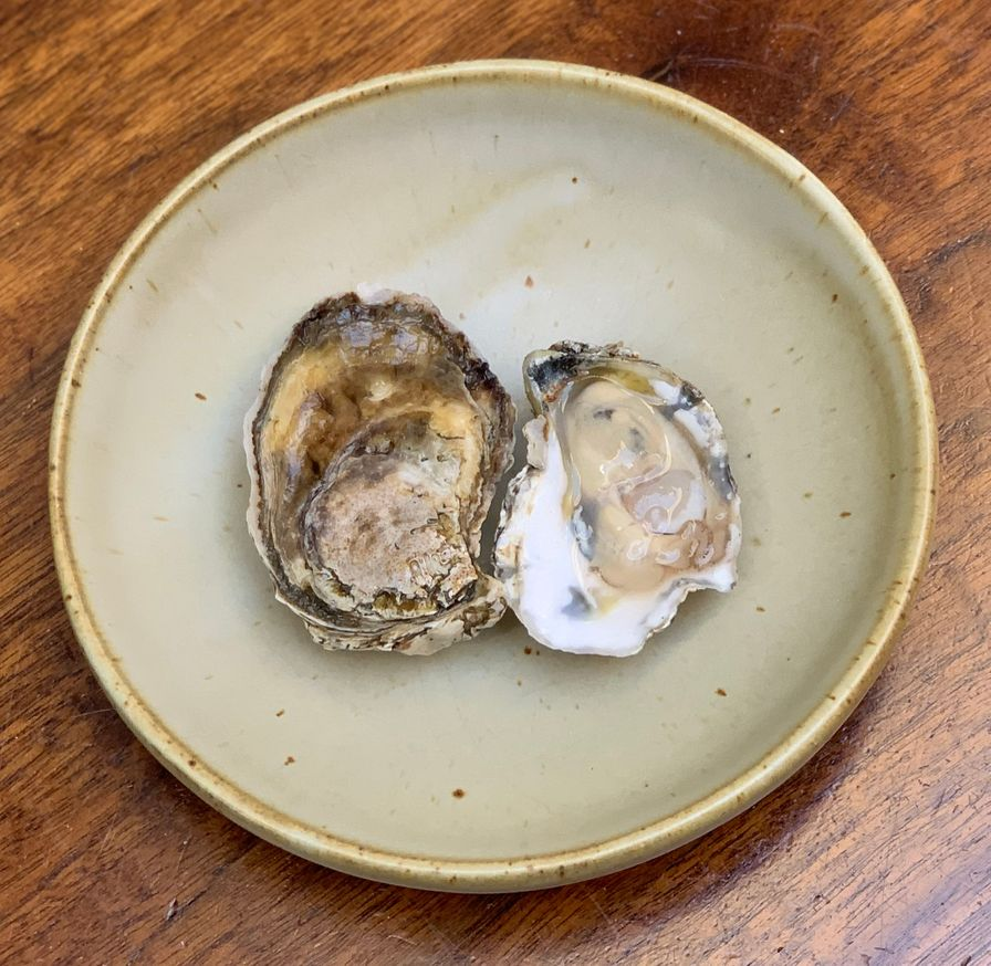 Parish Point Oysters
