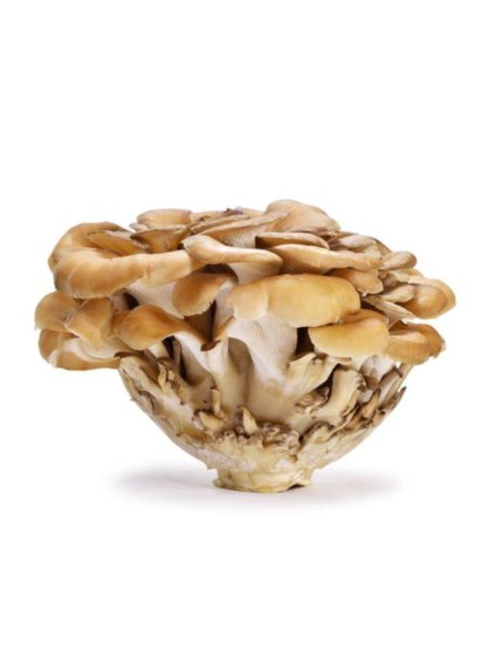Wild Mushroom Mix Box