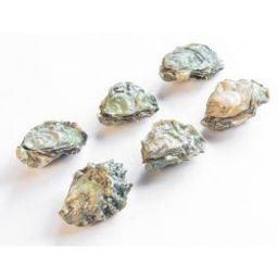Oysters - B.C. Royal Miyagi (6 Pcs)