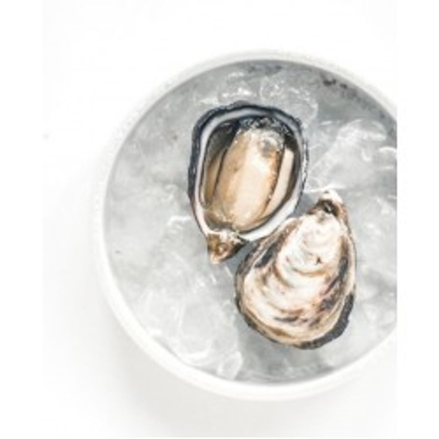 Oysters - B.C. Kusshi (6 Pcs)