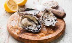 Fresh Pacific Coast Oysters-Dozen