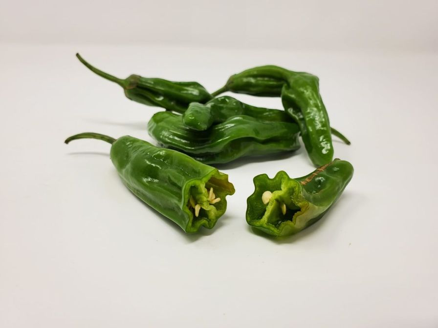 Fresh Shishito Chiles Peppers