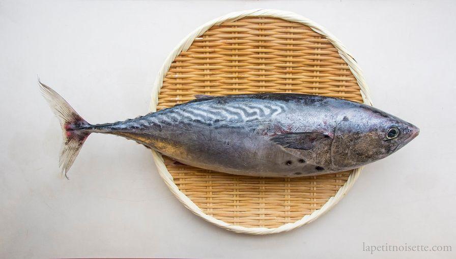 Katsuo - Skipjack Tuna