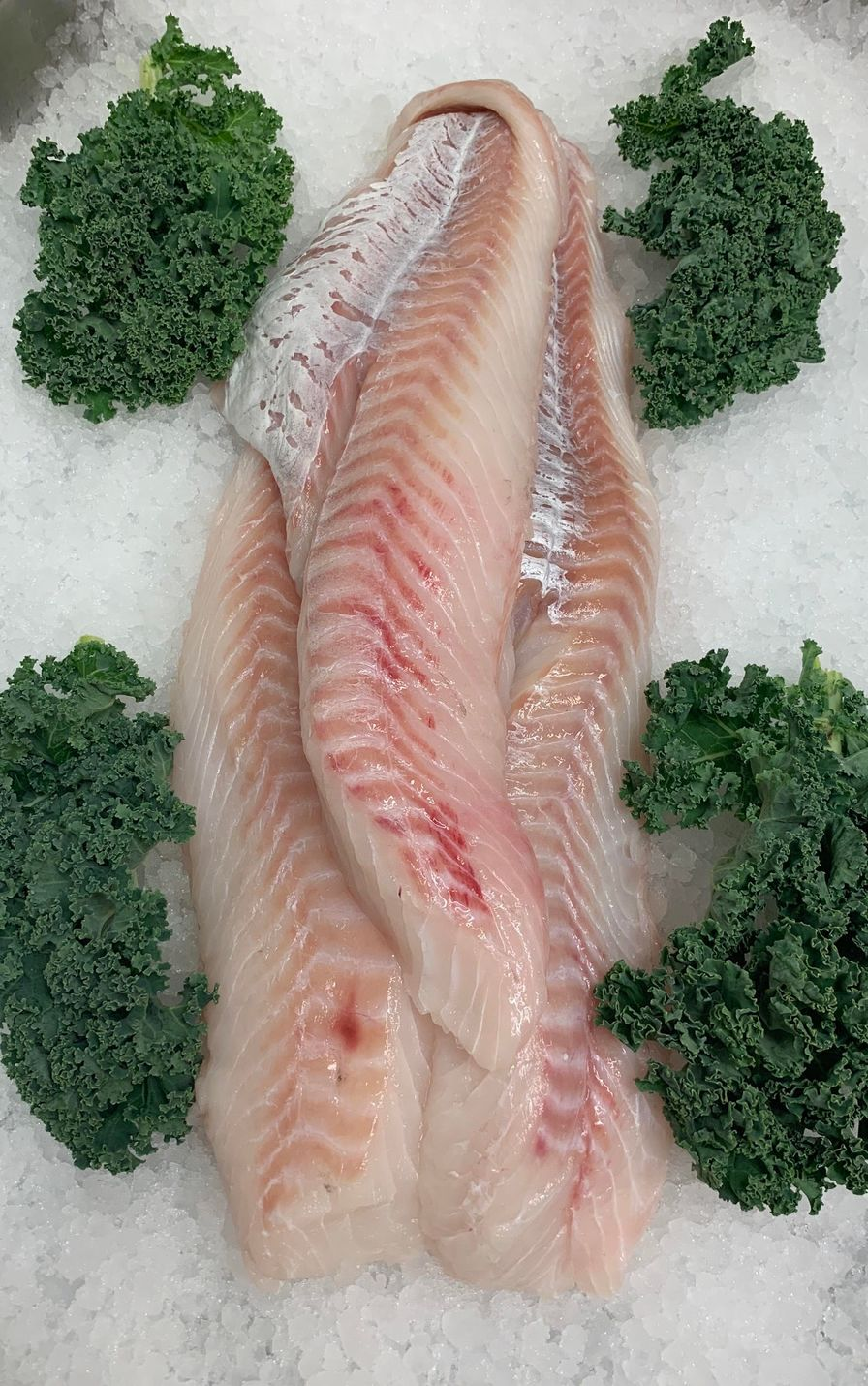 Wild Icelandic Cod Fillet