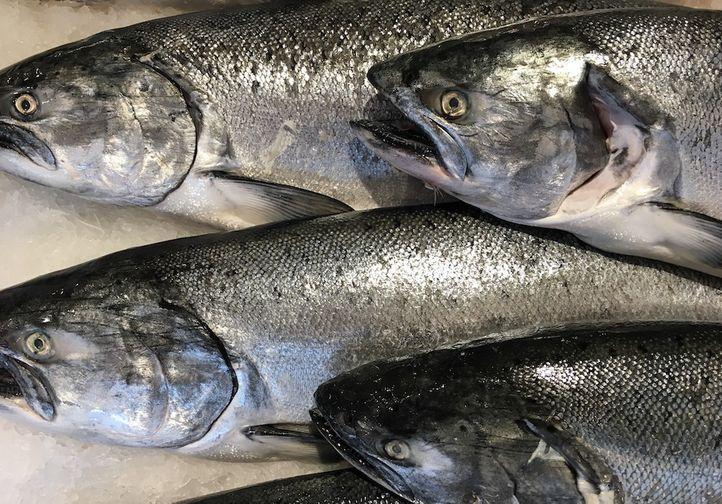 Salmon Head, Atlantic