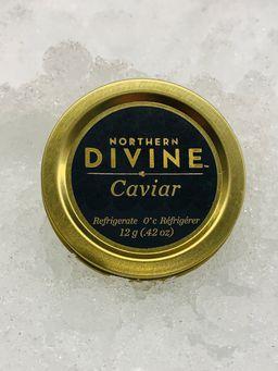 Northern Divine Sturgeon Caviar 12 Gram