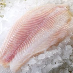 Frozen Catfish